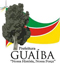 LogotipoPrefeituradeGuaiba-RS.jpg
